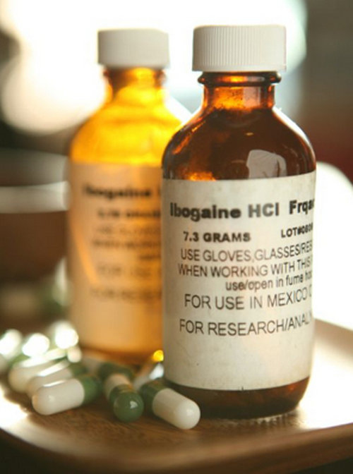 Ibogaine is normally given in capsule form.image