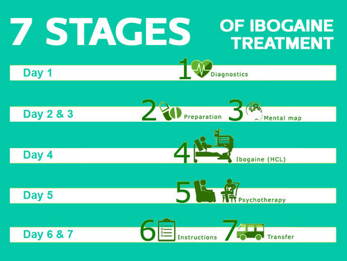 the typical process of Ibogaine treatment.photos