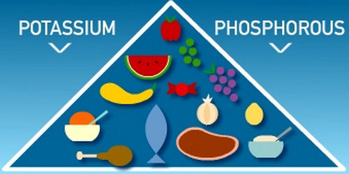 Foods rich in potassium and phosphorus.photo