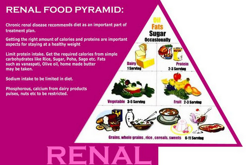 The renal food pyramid, a guide to people with renal disease.image